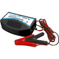 NUOVO caricabatterie mantenimento 12v 1.5 a ogni