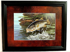 BASS FISH PICTURE TURTLE SPLASH DANCE MATTED FRAMED 12 X 16
