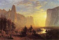 Art nice Oil painting landscape Yosemite Valley Yellowstone Park canvas 36""