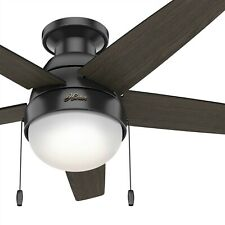 Hunter Fan 46 in Low Profile Matte Black Ceiling Fan with Light and Pulll Chain