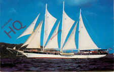 Picture Postcard__WINDJAMMER BAREFOOT CRUISES, FLYING CLOUD