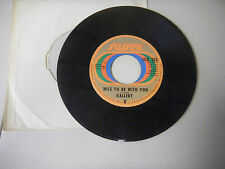 GALLERY ginger haired man /nice to be with you   SUSSEX   45