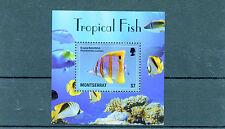 Montserratian Fish & Marine Animals Sheet Postal Stamps