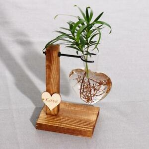 Heart Hydroponic Glass Vase Plant Terrarium — Hanging Pots with Wooden Tray Home