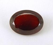 TOP HESSONITE : 29,05 Ct Natürlicher Hessonit Granat AAA aus Ceylon