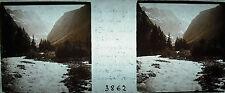 Photographie torrent de Celse Niere Pont du chemin de ...? 1914 les Boeufs Rouge