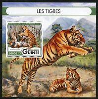 GUINEA 2016 THE TIGERS  SOUVENIR  SHEET MINT NH