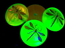 "CZECH UV GLASS CABOCHONS (4 pcs)31mm -1 3/16"" DRAGONFLY PLATINUM US-DNS 004"