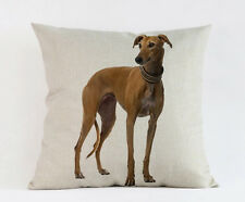 Greyhound / Whippet Tan  Dog Puppy Cushion Cover