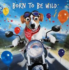 Jack Russell & Motorbike Funny Dog Birthday Card Born to be Wild 3D Goggly Eyes