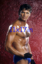 385,DAVID HASSELHOFF,BARECHESTED,SHIRTLESS,beefcake,11X17 POSTER SIZE PHOTO