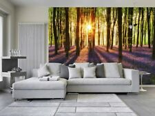 Woodland at dawn Wallpaper Wall Mural 3.66m x 2.54m living room & bedroom forest