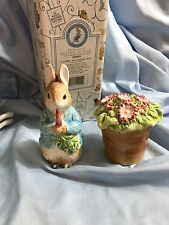 NEW The World of Beatrix Potter Peter Rabbit & Flower Pot Salt & Pepper Shakers