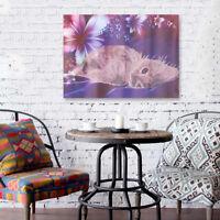 DIY 5D Diamond Embroidery Painting Cat Animal Cross Stitch Craft Home Wall Decor
