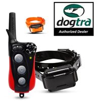 Dogtra iQ PLUS Remote 2 Dog Training Collar Expandable Small Dogs 10-40 lbs