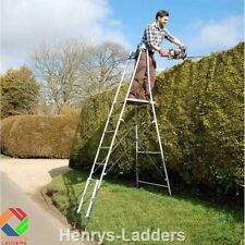 "Henchman Hi Step ""major"" Platform Garden Ladder - Next WK Day Delivery"