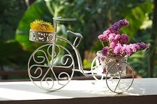 Mini Bicycle Basket Metal Wire Art Decor Vehicle Flewer Home Collectible Garden