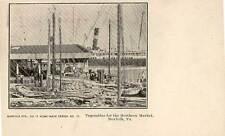 1902 NORFOLK VA Vegetables for Market Dock Ship Norfolk Sta. #11 postcard
