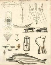 1802  Dolphin, Cromlech, Crowth And Cornet Copperplate