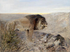 Oil painting wild animals King of beasts lions on the mountains landscape canvas