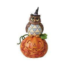 Jim Shore Halloween Mini Owl with Pumpkin 2020 New 6006704