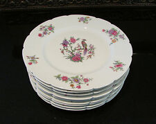 9 Signed Haviland Limoges France 10in Dinner Plates Peacock Birds RARE Old