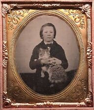 Rare 1/6 Plate Griswold Patent Tintype - Boy Holding American Shorthair Cat