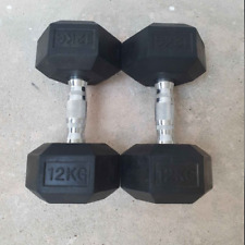 Lot Of 2 Hex Neoprene 12 KG  Dumbbell Weights Total 24 KG