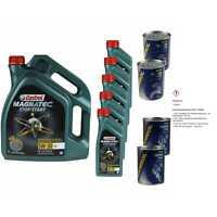10L Olio Motore Castrol Magnatec Stop-Start 5W-30 C2 2xMotor Doctor + Rosso