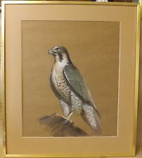 Bird of Prey, Original Pastel in Mount