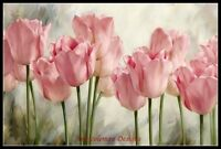 Pink Tulip Flowers - Counted Cross Stitch Patterns Needlework for embroidery