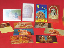 11 vintage Cocker Spaniel dog postcards