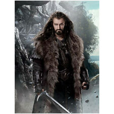 The Hobbit Richard Armitage as Thorin Standing Tall 8 x 10 Inch Photo