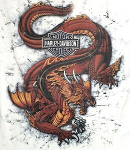 Harley-Davidson -129 Tennessee Tail Of The Dragon - Mens Large T Shirt - USA