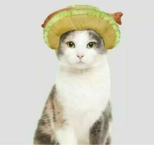 NWT Target Hyde & EEK! Boutique Fish Taco Headpiece Cat Small Dog Pet Costume