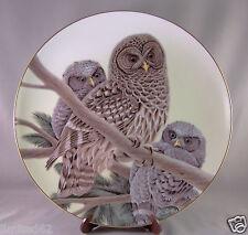 """Armstrong'S Art on Porcelain - Artist John A. Ruthvin - """" Barred Owl """""""