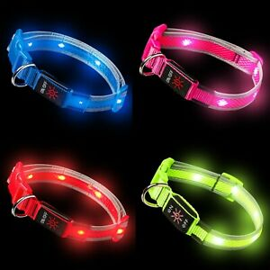 LED Dog Collar Light Up Luminous USB Rechargeable Flashing Collar Night Safety