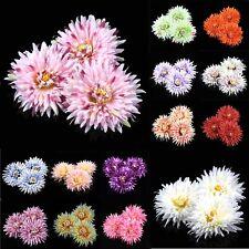 Bulk 5Pcs Artificial Large Chrysanthemum/Daisy Silk Fake Flower heads DIY Craft