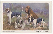 FOXHOUND OTTERHOUND BEAGLE BLOODHOUND OLD SPRATTS DOG ART POSTCARD R WARD BINKS