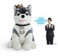 Korean drama original browny  brownie dog stuffed animal Siberian husky doll