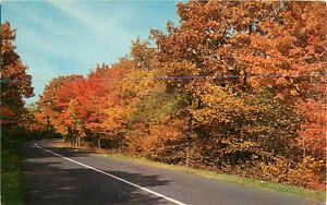 Postcard Autum On Skyline Drive, Shenandoah National Park