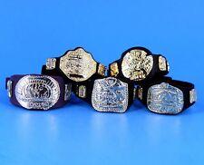 WWE Jakks Championship Belts Lot Wrestling Figure Accessory IC European Tag_s21