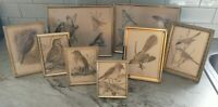 Vintage lot gold brass metal picture Art frames geo boho decor birds 3x4-8x10""