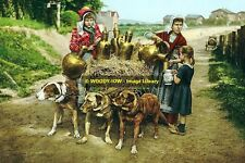 rp13721 - Dog Milk Cart & Children , Brussels , Belgium - photo 6x4