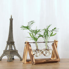 Tabletop Decor Glass Hydroponic Vase Flower Plant Pot with Tray 2 Beakers