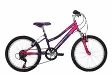 Raleigh Girls' Front Suspension Mountain Bicycles
