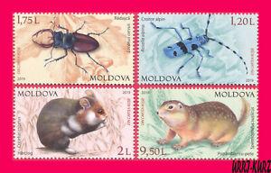 MOLDOVA 2019 Nature Fauna Insects Beetles Mammals Rodents 4v Mi1092-95 Sc1027-30