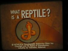 16mm What is  a Reptile? Educational Film 800'
