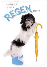 A6 Postkarte Tierpostkarte Hund Regenschirm Ich lass Dich nicht im Regen stehen