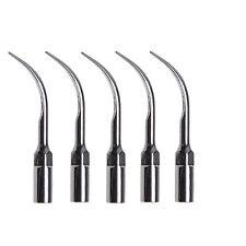 5 pcs EMS Woodpecker Type Dental Ultrasonic Scaler Tip Scaling G5 in USA